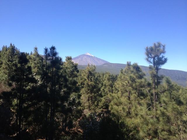 Bergtraining auf Teneriffa - vom  27. März bis 3. April 2021