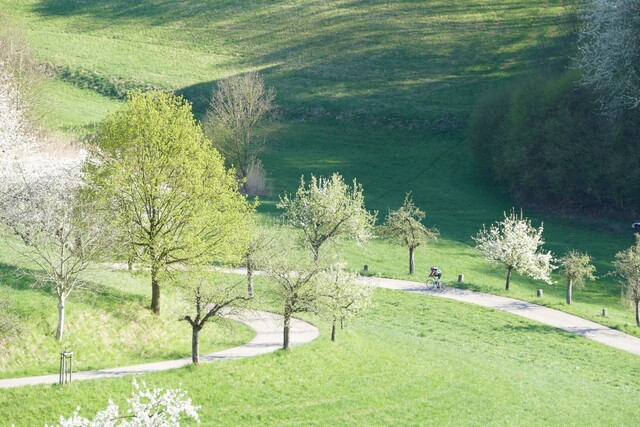 Saison-Neustart im Odenwald - vom  3. bis 6. Juni 2021